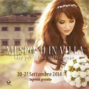 MiSposoInVilla2014