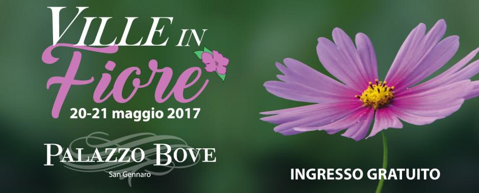Bove-villeinfiore 2017-SITO